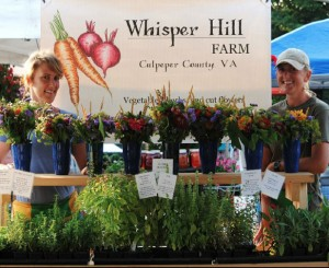 Whisper Hill Farm