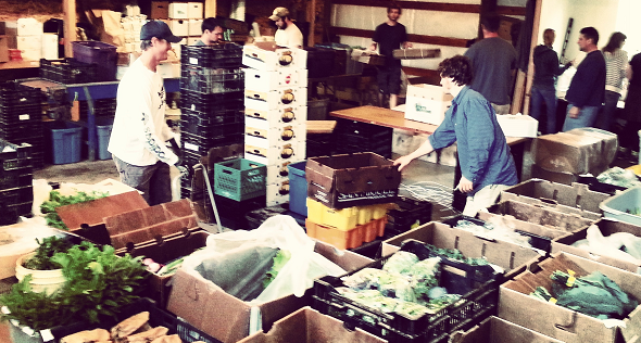 Packing up produce at Growing Veterans Farm