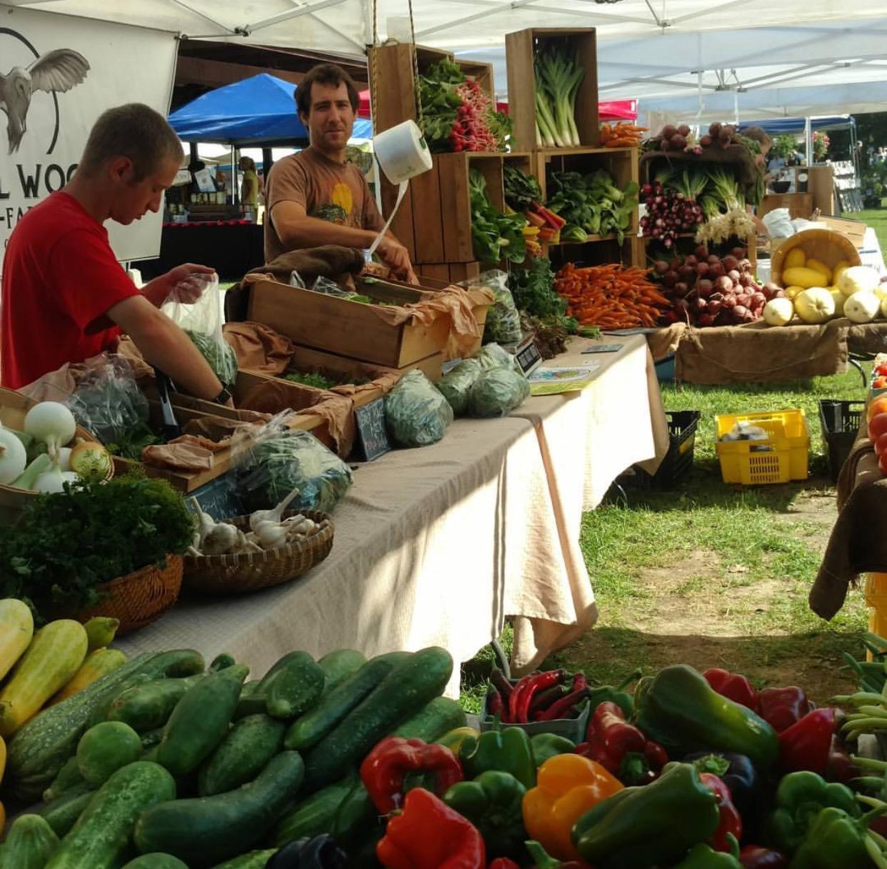 Saratoga Farmers Market- Providing A Sense Of Home