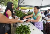 Rosa helps customers at her tent at Crossroads Farmers Market